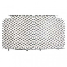 Grille (2005 on) (ps111939pb)