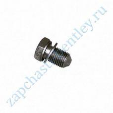 Drain plug (engine sump) (n90813202)