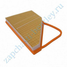 Air filter rh (right hand) (w12) (3w0129620b)