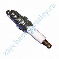 Spark plugs (101905600bp)