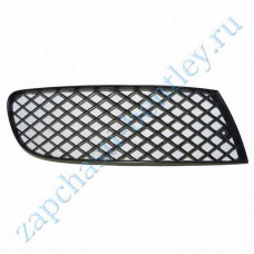 Right front Reset the mesh on the bumper (flying spur 2005-2009) (3w5807682c)