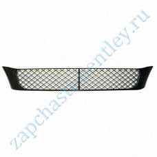 Central plastic bumper on Reset (flying spur 2005-2009) (3w5807667b)