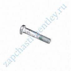 Bolt (front steering knuckle the tie rod end) (4d0407192d)