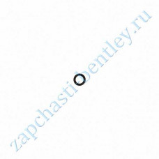 O-ring washer (Bentley continental GT speed, Bentley continental GT Speedc & flying spur) (3w0955729)