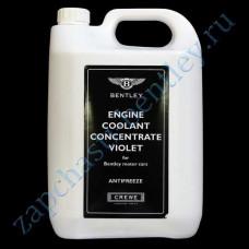 Coolant (5 lлитров) (jnv862564)