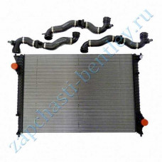 Radiator and hoses (3w0198115g)