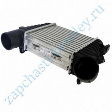 Intercooler (3w0145803e)