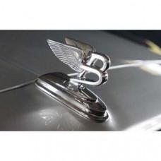 Flying B-sculpture (50500BOEM) on Bentley Continental