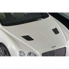 Engine bonnet, primed (505110002) on Bentley Continental