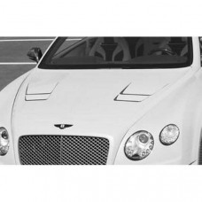 NEW engine bonnet, primed (505110012) on Bentley Continental